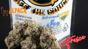 Fresca's OFF THE COUCH by Lyfted Farms